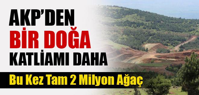 2 MİLYON AĞAÇ KESİLMESİNE ONAY ÇIKTI !