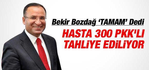 BAKAN BOZDAĞ'DAN 300 PKK'LIYA AF SİNYALİ !