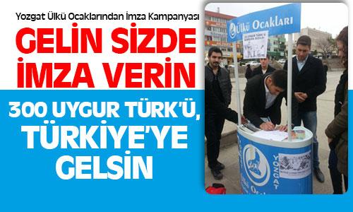 Yozgat Ülkü Ocaklarından Uygur Türkleri İçin İmza Kampanyası !