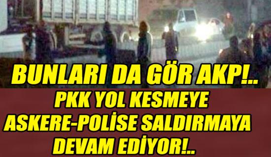 PKK Yol Kesmeye Devam Ediyor, Bunları da gör AKP !