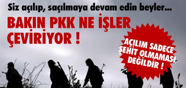 SİZ AÇILIP SAÇILMAYA DEVAM EDİN PKK İŞ BAŞINDA !