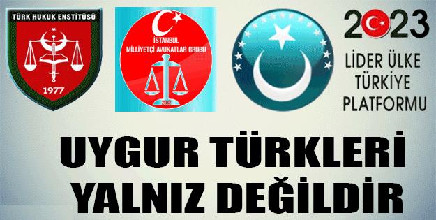 Uygur Türkleri Yalnız Değildir.