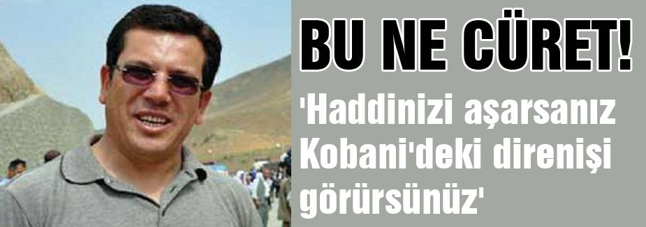 HDP'li Vekilden haddi aşan sözler