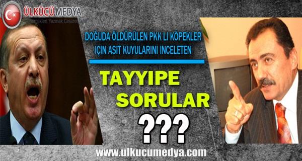 PKK li Köpekler için Asit Kuyularını İnceleten Tayyipe Sorular?