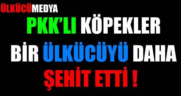 PKK'lı köpekler bir Ülkücüyü daha şehit etti !