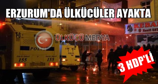 Erzurum'da Ülkücüler Ayakta, 3 HDP'li...