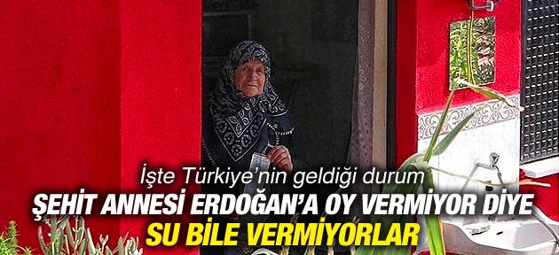 ERDOĞAN'A OY ATMAYAN ŞEHİT ANNESİNE SU BİLE VERMİYORLAR !