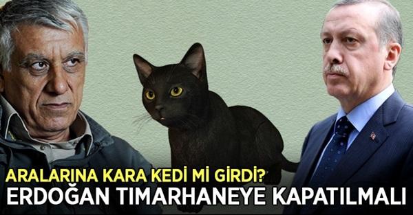 Pkk'lı Cemil Bayık Erdoğan Tımarhaneye Kapatılmalı !