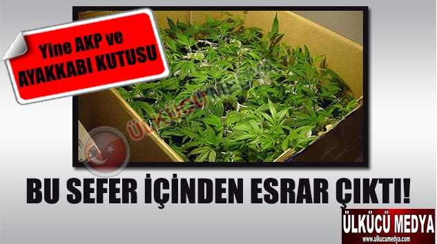 AKP'li vekilin oğlunun ayakkabı kutusunda esrar çıktı !