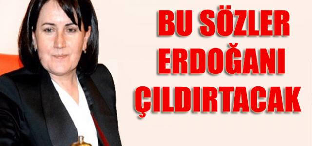 Meral Akşener'den Erdoğan'ı kızdıracak yolsuzluk yorumu