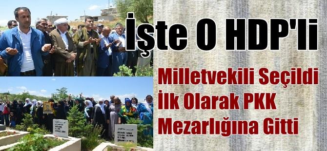 Milletvekili Seçildi İlk Olarak PKK Mezarlığına Gitti