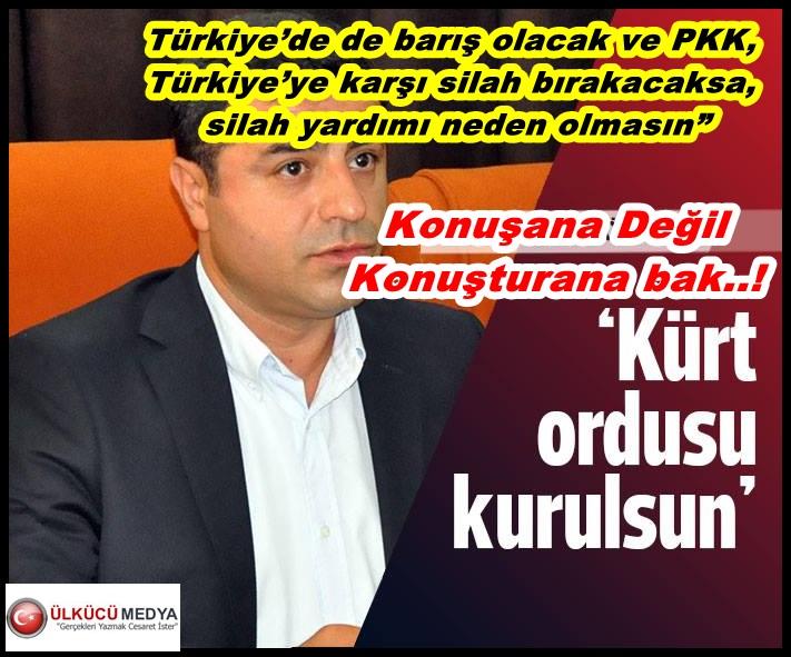 Demirtaş'tan öneri: Kürt ordusu kurulsun ....!