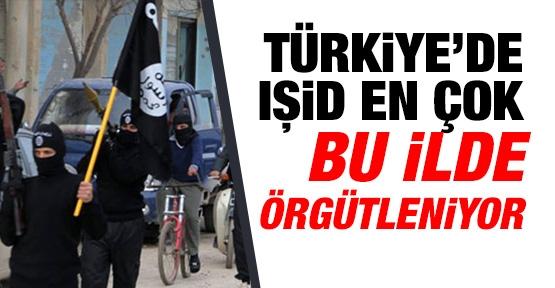 Türkiye'de IŞİD en çok bu ilde örgütleniyor !