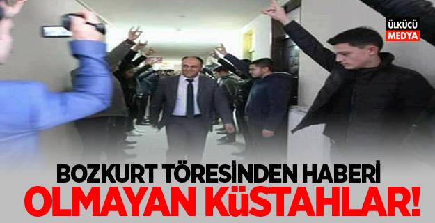 """""""BOZKURT TÖRESİNDEN HABERİ OLMAYAN KÜSTAHLAR!"""""""