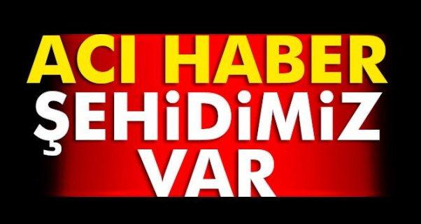 Mardin- Diyarbakır Yolunda Pkk'dan Bombalı Tuzak; 2 Şehit