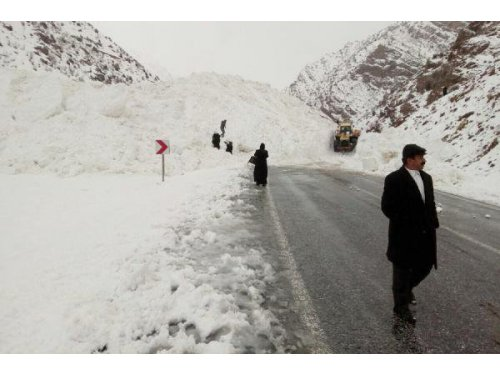 Çatak-Van Karayoluna Çığ Düştü, Yol Ulaşıma Kapandı