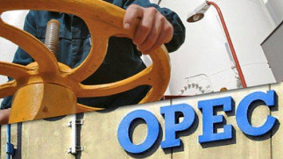 OPEC'ten, Rusya'nın Petrol Üretim Kısıtlama Temposuna Övgü
