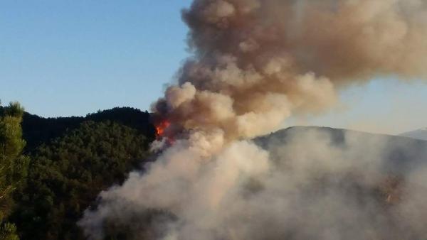 Kastamonu'daki Orman Yangını Söndürülmeye Çalışılıyor