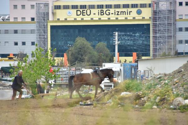 Bu Zamanda İzmir'in Göbeğinde Kara Saban?