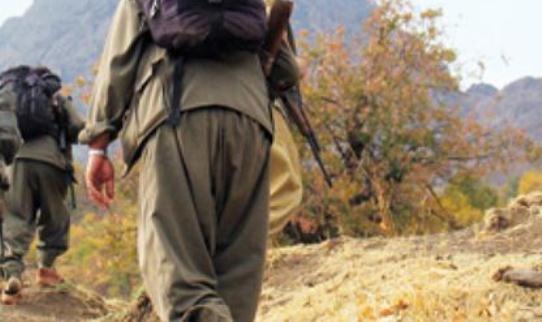 Çatak'ta, Pkk'lı 3 Terörist Etkisiz Hale Getirildi