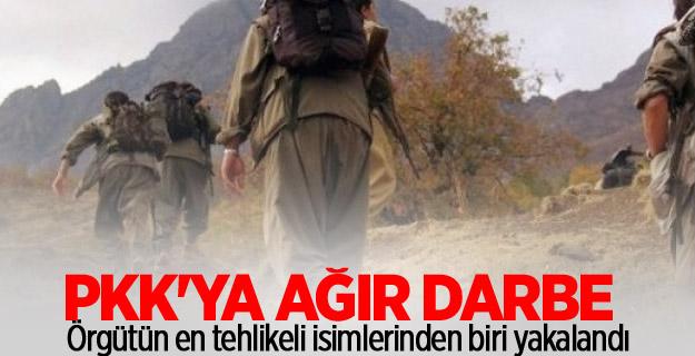 PKK'ya ağır darbe... O isim yakalandı!