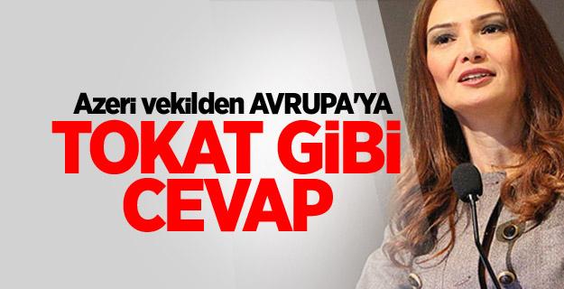 Azeri vekilden Avrupa'ya sert Türkiye tepkisi!