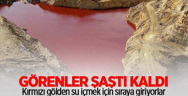Kırmızı gölden su içmek için sıraya giriyorlar