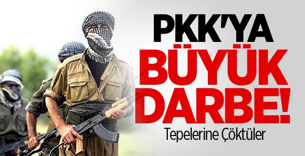 PKK'ya büyük darbe! 42'si temizlendi