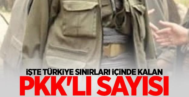 İşte Türkiye sınırları içinde kalan PKK'lı sayısı