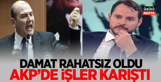 AKP'de İşler karıştı! Berat Albayrak, Soylu Rahatsızlığı