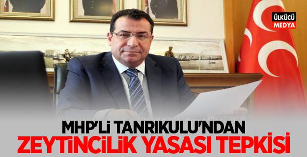 MHP'li Tanrıkulu'ndan, 'Zeytincilik Yasası' Tepkisi