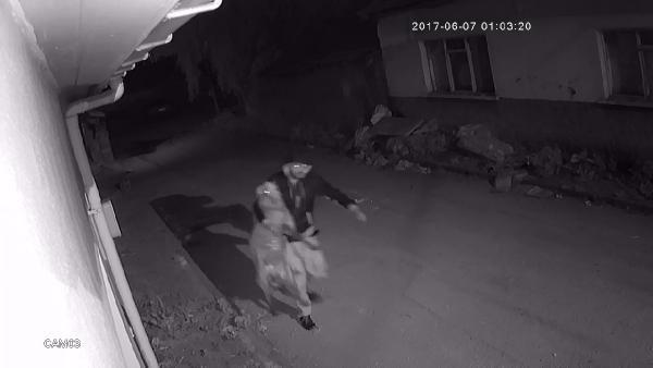 Koyun Hırsızlarını Güvenlik Kamerası Ele Verdi
