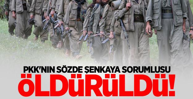 PKK'nın sözde Şenkaya sorumlusu öldürüldü!