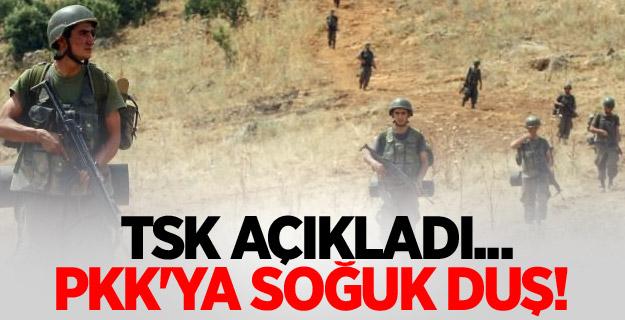 TSK açıkladı... PKK'ya soğuk duş!
