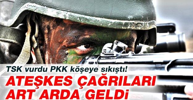 TSK vurdu PKK köşeye sıkıştı! Ateşkes çağrıları art arda geldi
