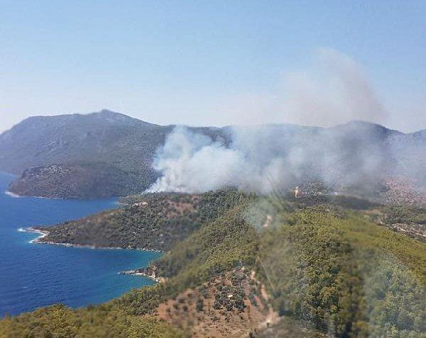 Milas' da Orman Yangını