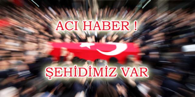 Mardin'den acı haber: Şehidimiz var