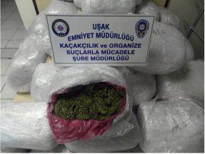 Uşak'ta 134 Kilo Esrar Yakalandı (2)