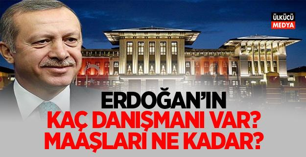Erdoğan'ın Kaç danışmanı var ne kadar maaş alıyorlar?
