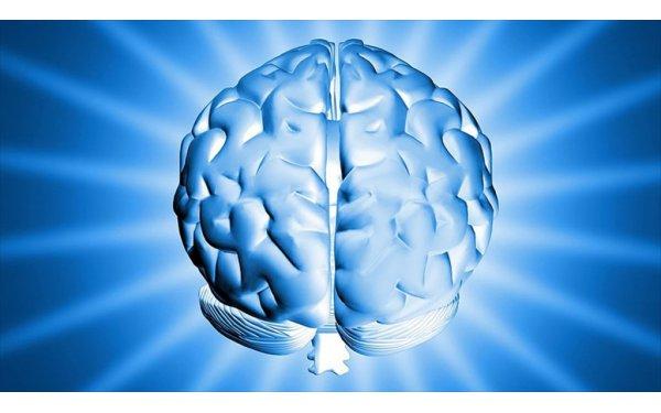 Zeki İnsanlar Daha Etkin Beyin Bağlantılarına Sahip