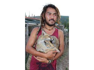 Brunei'den Geldi, Lisinia'da Hayvan Bakıcısı Oldu