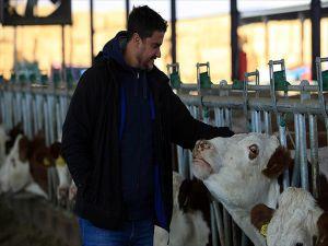 'Beyaz Yakasını' Çıkartıp Süt Üretimine Başladı