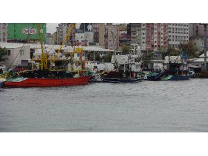 Fırtına Balık Fiyatlarının Yükselmesine Neden Oldu