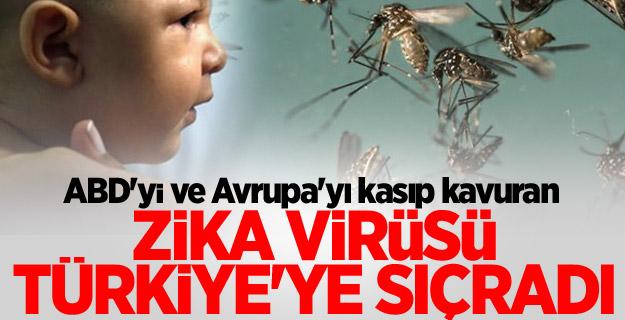 Zika virüsü Türkiye'de!