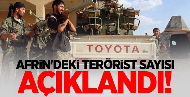 Afrin'deki terörist sayısı açıklandı!