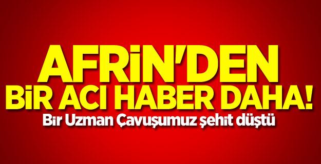 Afrin'den bir acı haber daha!