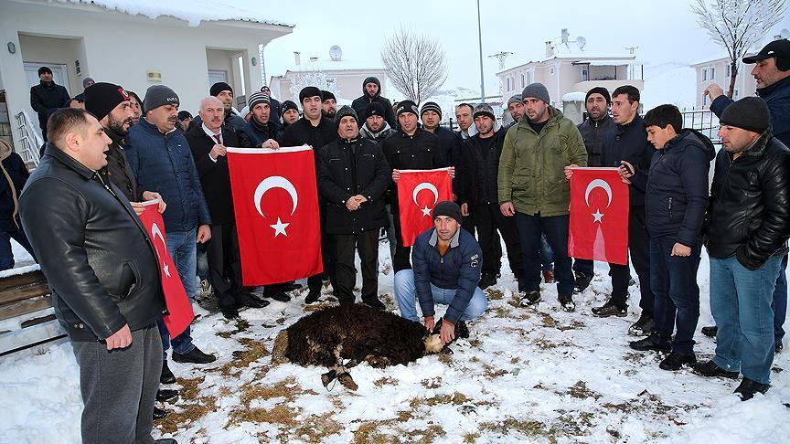 Ahıska Türkleri kurban kesip Mehmetçik'e dua etti