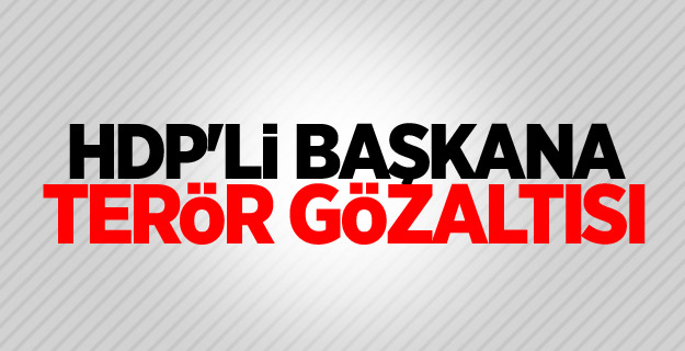 HDP'li başkana terör gözaltısı