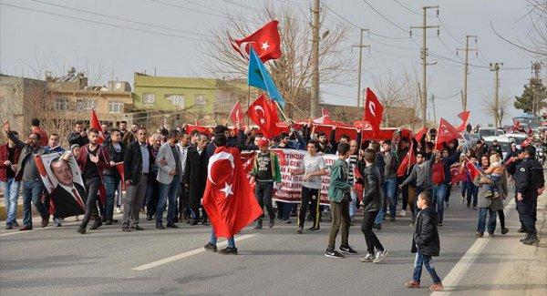 Mardin'de Zeytin Dalı Harekatı'na Destek Yürüyüşü