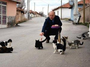 Mahalledeki Kediler İmamın Yolunu Gözlüyor
